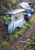 My favourite junk. Mini (Lazenby43) Tags: junk mini scrapyard scrap derelict 1964