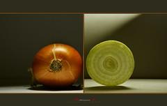 onion (aniribe) Tags: color macro art vegetables nikon close onion