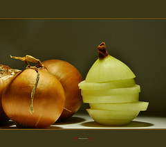 onion2 (aniribe) Tags: color macro art nikon close onion ringexcellence