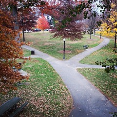 Tyler Park (Zepfanman.com) Tags: autumn square lofi squareformat project365 project365316 iphoneography instagramapp uploaded:by=instagram foursquare:venue=4b81e837f964a52081c330e3 project36511nov12