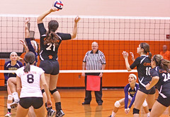 IMG_8548 (SJH Foto) Tags: school girls net championship high jump shot state action battle class area spike midair volleyball block vs williamson clarion tioga a