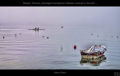 Rowers, floaters, scavengers and species unknown covered in the mist (Nikos O'Nick) Tags: lake seascape boat nikon nikos greece hdr rowers kastoria farbspiel d300s  kotanidis