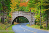 Stanley Brook Bridge - Acadia N.P - Maine (~ Floydian ~ ) Tags: park autumn usa color colour tree fall colors leaves canon season landscape leaf colours seasons unitedstates maine newengland structure foliage national meijer acadia henk windingroad historicplaces carriageroad floydian proframe proframephotography canoneos1dsmarkiii stanleybrookbridge henkmeijer