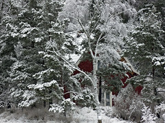The Red Cottage (Steffe) Tags: winter house snow sweden cottage tungelsta haninge lsta