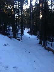 Original photo from Nov 27 post. (forrainorshine) Tags: snow mountains newmexico albuquerque neilgaiman