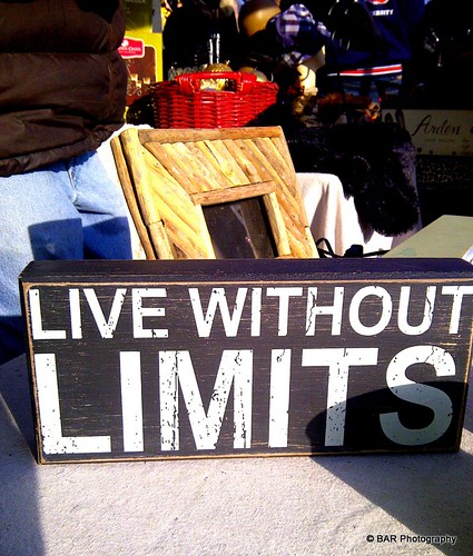 LIVE WITHOUT LIMITS (Yes I bought this)