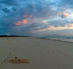 sunrise (adamfaulknergraphics) Tags: morning pink blue sea sky beach lines clouds sunrise dawn coast nationalpark sand waves crab nsw booti bootibooti