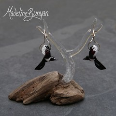 """Magpies • <a style=""""font-size:0.8em;"""" href=""""https://www.flickr.com/photos/37516896@N05/8252417720/"""" target=""""_blank"""">View on Flickr</a>"""