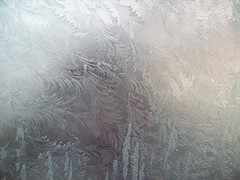 frost 4 (Martha-Ann48) Tags: roof white ice window glass leaves jack frost patterns conservatory ferns