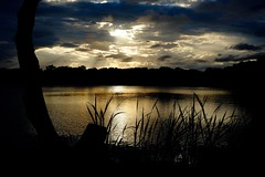 Sunset, Lake Ainsworth