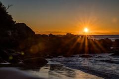 A day begins (OzzRod) Tags: pentax k1 hdpentaxdfa2470mmf28 sunrise sunburst starburst flare coast beach headland