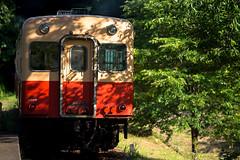 Kominato Railway #40 (The last) (Yoshi T. (kagirohi)) Tags: japan japanese chiba kominato railway kominatorailway railroad canon eos 5d mark iii canoneos5dmarkiii ef70200mmf28lisiiusm localline train tram diesel landscape