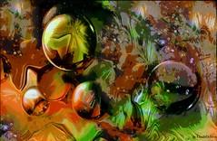 New Season (Cleide@. a bit slowly ) Tags:  cleide brazil 2016 photo art abstract digital ps6 texture newseason artdigital exotic netartii sotn awardtree