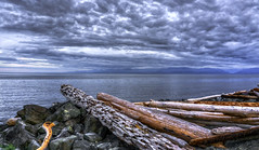 Logs (Paul Rioux) Tags: britishcolumbia bc vancouverisland colwood westshore westcoast esquimaltlagoon beach driftwood logs clouds outdoor seascape seashore seaside waterfront nature scenic calm water horizon prioux sony a6000