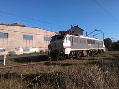 BABEO (apolofeve) Tags: renfe 251 mitsubishi mercancias tren gijon puerto locomotora