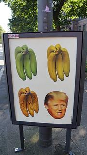 Rotten Banana = Donald Trump
