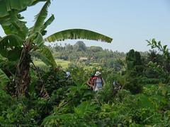 DSC05312.jpg (J0celyn79) Tags: asie bali indonésie karangasem id