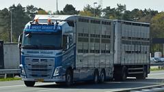 NL - Groot Zevert Volvo FH GL04 (BonsaiTruck) Tags: groot zevert volvo gl04 lkw trucks lorrys camion lorry truck lastzug lastwagen