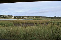 St Ouen's Pond (andyt1701) Tags: jersey