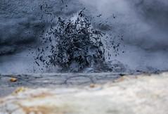 Splash! (katrin glaesmann) Tags: iceland hverir geothermalarea nmafjall mvatn unterwegsmiticelandtours photographyholidaywithicelandtours