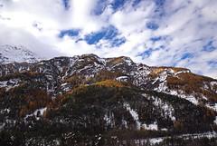DSC_6289m (MILESI FEDERICO) Tags: wild snow alberi italia nuvole colore natura piemonte neve nebbia autunno colori freddo nevicata panorma nubi nimon milesi tamron1750 visitpiedmont paesaiio