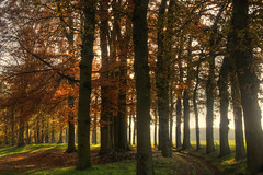 Autumn at Hackfort (kawong12) Tags: autumn holland morninglight nederland hdr gelderland hackfort vorden ochtendlicht deachterhoek
