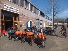 Bakfiets at Work Cycles (Clark Nikolai) Tags: netherlands amsterdam bicycle nederland fiets bakfiets cargobikes fietswinkel