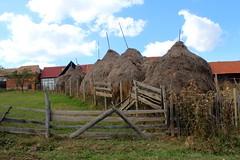 Haystacks Along Rte. 106E - Biei, Jud. Sibiu, Romania (Wayne W G) Tags: scenery europe farm farming farmland haystacks romania haystack farms hay easterneurope sibiu 106e geo:country=romania biei dj106e