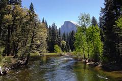 Yosemite National Park (Fazia_) Tags: river landscape nationalpark yosemite halfdome yosemitenationalpark mercedriver fotofazia
