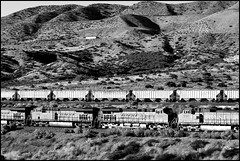 Downhill Race (greenthumb_38) Tags: railroad up train desert trains tradition silverwood pilgrimage bnsf cajon cajonpass canon40d desertrailroading jeffreybass cpsilverwood cajonpilgrimage pilgrimshill