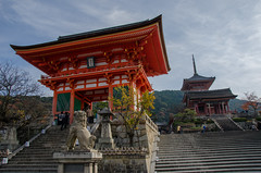 The Red leaves of Kiyomizu-Dera, Kyoto /  (Kaoru Honda) Tags: city autumn nature japan landscape temple japanese nikon kyoto traditional     kansai    japon kiyomizudera  redleaves  kinki higashiyama      d7000