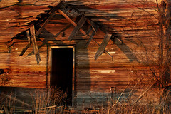 welcome home (LizLeigh Photos) Tags: sunset house abandoned broken dark illinois doorway rusted grasses prairie enter