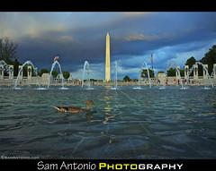 Oh Duck! National World War II Memorial - Washington, D.C.