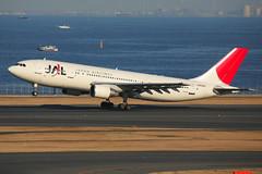 Japan Airlines A300-622R (JA8565) (TFG Lau) Tags: canon airplane eos tokyo aviation jet aeroplane airbus 5d jl canoneos spotting jal haneda hnd japanairlines planespotting oneworld a300 eos5d ab6 rjtt oneworldalliance ja8565
