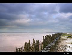 Feel the wad (Just me, Aline) Tags: sea sky holland netherlands clouds coast wadden nederland wolken zee workshop lucht wad kust paaltjes moddergat basmeelker beleefhetwad