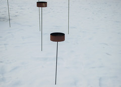 Bargaining with melancholy (yellowgreywolf) Tags: snow sticks marshaller bargainingwithmelancholy kohandel