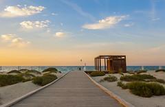 To the Beach (Alghailani) Tags: beach abudhabi carlo monte