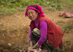 Woman With Tatooed Arms Working In A Field, Yongsheng, Yunnan Province, China (Eric Lafforgue) Tags: china people color colour horizontal person costume asia earring womenonly jade 中国 agriculture yunnan tatoo kina chin cina adultsonly oneperson chine traditionaldress onepeople xina 中國 eastasia 중국 realpeople tiongkok الصين chiny סין kína çin onewomanonly lookingatcamera colorpicture yunnanprovince yongsheng 1people китай 中華人民共和国 trungquốc čína چین จีน kitajska tsina चीन չինաստան ჩინეთი כינע κίνα кина a0007742