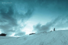 The Sledding Hill (Boreal Bird) Tags: sledding hss explorefrontpage sliderssunday