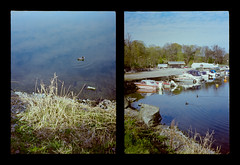 2016-04--05 - Olympus Pen EE - Kodak Ektar 100-13 (sarajoelsson) Tags: city urban color film analog pen spring diptych sweden stockholm snapshot olympus ishootfilm analogue halfframe everydaylife filmgrain vardag 2016 filmphotography penee filmisnotdead halvformat diptyk teamframkallning digitizedwithdslr