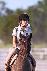 IMG_2712 (SJH Foto) Tags: horse show action shot tween teen teenager girls jumper jump hurdle wtc walk trot canter closeup