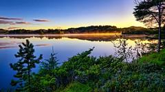 Golden mist, Norway (Vest der ute) Tags: g7x norway rogaland ryksund waterscape water tree landscape reflections fav25