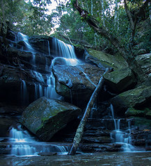 Somersby Falls #1 (JamesCookPhoto) Tags: olympus ep3 water waterfall waterforms 2014 slowshutter slowwater ndfilter somersby falls rocks tree forest bush australia creek