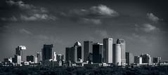 Tampa Skyline (mdavies149) Tags: blackwhite bw tampa florida cityscape skyline usa landscape monochrome nikon d600 michaeldavies buildings skyscrapers