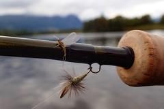 Hemsil (Brant He. Fageraas) Tags: hemsil hemsedal norway nature macro colors bokeh flyfishing flyfishingart mayfly