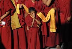 India ('16) (kizeme) Tags: asia india ladakh leh thikseygompa avventurenelmondo