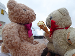 1Sun 5K Lands End3 Ice Cream DT & D1 (g crawford) Tags: danger ted dangerted dt dee landsend bear teddy teddies cone icecream crawford 5k