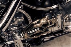 bikes-2009world-086-e-l