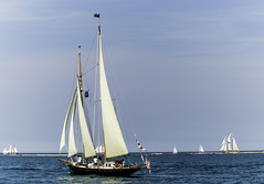 Tall ships 2016 When and If pic2 (Artemortifica) Tags: boats chicago navypeir tallships band clouds fountains garden lakemichigan sailors sails skyline summer illinois