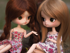 Gossip girls (Malina (LaelP)) Tags: doll puppe mueca poupe pullip dal groove frara my select cassie cassidy lila full custom obitsu 23 obitsu23 repaint green eyes chips red hair blond fair toy saga malina asian fashion dress flowers outdoor mikiyochii fc